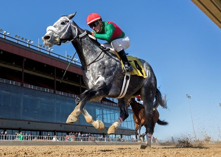 Goneghost wins the 2018 Milwaukee Avenue Handicap