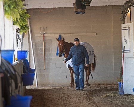 Brad Cox walking Monomoy Girl Morning scenes at Churchill Downs on April 27, 2018 Churchill Downs in Louisville, Ky.