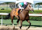 Juddmonte Farms' Golden Mischief won an allowance race April 4 at Oaklawn Park