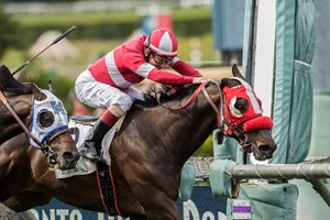 What a View (inside) holds off Colonist in the American Stakes at Santa Anita Park
