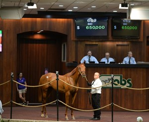Hip 669, a Candy Ride filly, brought $650,000.