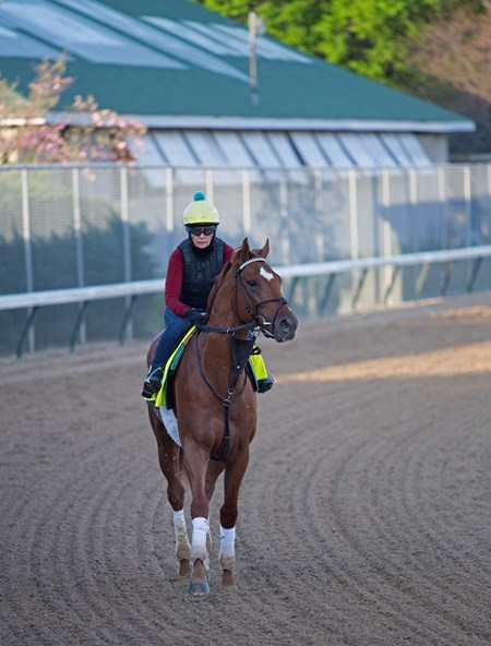 Hofburg Morning scenes at Churchill Downs on April 28, 2018 Churchill Downs in Louisville, Ky.