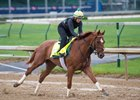 Hofburg gallops a mile and a quarter at Churchill Downs