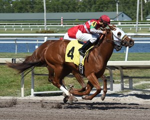 Bye Bye J gets up just in time to win by three-quarters of a length at Gulfstream Park
