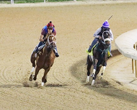 Bravazo (inside) works with Berko at Churchill Downs