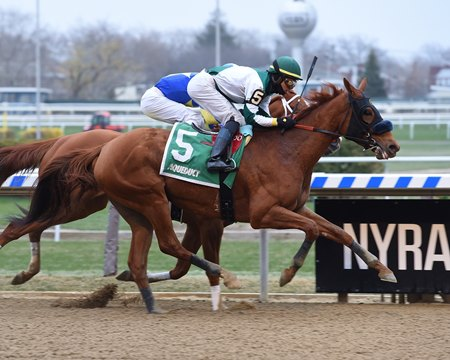 Blue Prize gets up in the final strides to win the Top Flight by a neck at Aqueduct