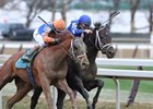 Vino Rosso moves to the lead in the stretch of the Wood Memorial at Aqueduct Racetrack