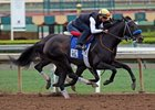 Instilled Regard, the last horse to make the cut for the Kentucky Derby, works five furlongs in 1:00 4/5 at Santa Anita
