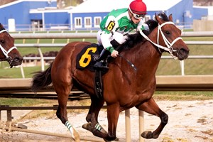 Magnum Moon Stays Perfect With Arkansas Derby Win Bloodhorse