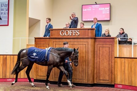 A Kyllachy colt consigned as Lot 111 brings the top price at the Goffs UK breeze-up sale in Doncaster