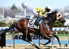 Control Group wins the Mr. Sinatra Stakes at Aqueduct Racetrack