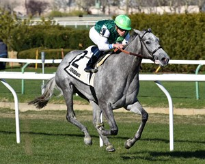 Significant Form runs away to a 6 1/4-length victory in the Memories of Silver at Aqueduct