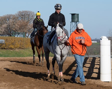 Gettysburg Morning training at Keeneland on April 12, 2018 Keeneland in Lexington, Ky.