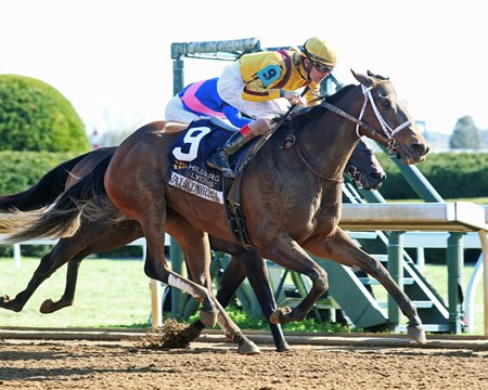 Valadorna gets by Apologynotaccepted to win the Doubledogdare at Keeneland