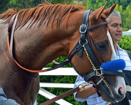Santa Anita Derby winner Justify is now three-for-three going into the Kentucky Derby