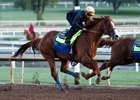 Justify works six furlongs in 1:13 flat April 21 at Santa Anita Park