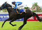 Adorable Analia wins under Warren Kennedy April 8 at Greyville