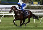 Winx in an April 7 exhibition gallop at Royal Randwick
