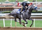 Unique Bella, winner of the grade 1 La Brea Stakes, works April 8 at Santa Anita