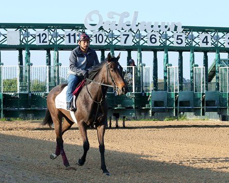 Cosmic Burst trains April 10 at Oaklawn Park