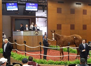 A Justin Phillip colt consigned as Hip 370 sells for $275,000 at the Fasig-Tipton Midlantic sale