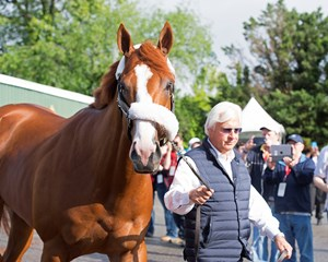 Justify with trainer Bob Baffert the morning after his Preakness win at Pimlico Race Course
