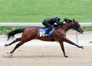 A Union Rags colt consigned as Hip 561 breezed an eighth-mile in 10 flat at the Fasig-Tipton Midlantic under tack show