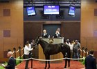 Hip 204 tops the first session of the Fasig-Tipton Midlantic sale of 2-year-olds in training