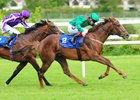 Hazapour wins the Derrinstown Stud Derby Trial Stakes at Leopardstown