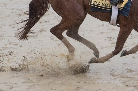 Good Magic out for his morning exercise  at Pimlico Race Course in preparation for Saturday's Preakness Stakes Thursday May 17, 2018 in Baltimore, MD