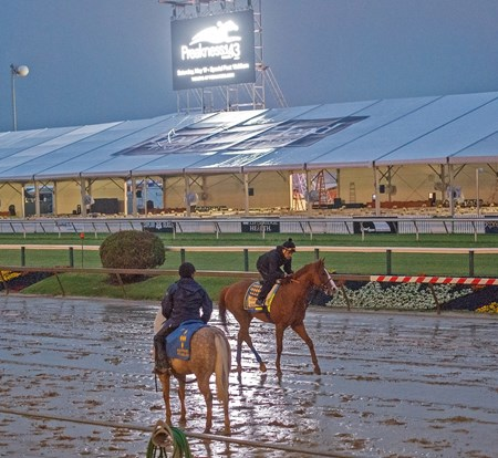 Justify - Pimlico, May 18, 2018