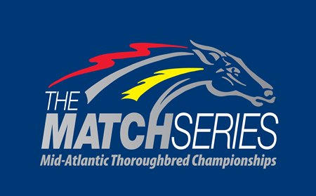 Match Series To Offer Free Past Performances Bloodhorse