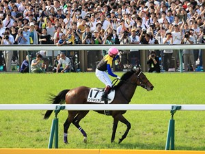 Wagnerian after his Japanese Derby win