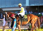 Bee Jersey heads to the winner's circle after winning the Steve Sexton Mile by  5 1/2 lengths at Lone Star Park