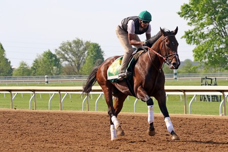 Bolt d'Oro gallops at Keeneland for owner and trainer Mick Ruis