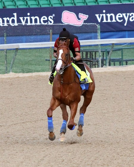 Justify on the track at Churchill Downs on May 2, 2018