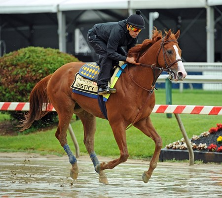 (May 17, 2018) Kentucky Derby winner Justify and exercise rider Humberto Gomez