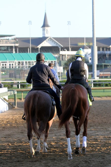 Hofburg heading to the track at Churchill Downs on May 1, 2018