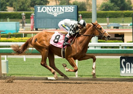 Six Pack Gal First Winner For Boisterous Bloodhorse