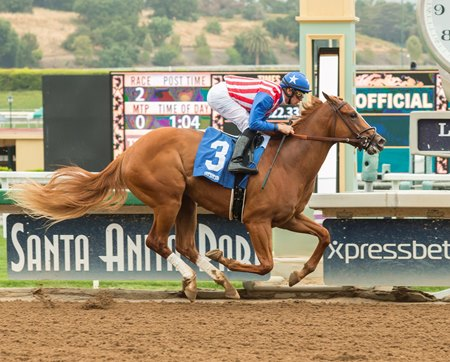 Tijori wins a maiden special weight at Santa Anita in her debut