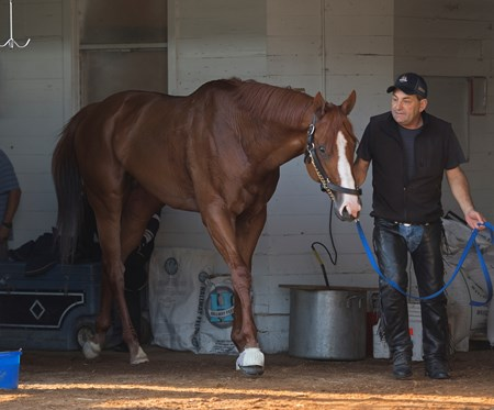 Jimmy Barnes brings Justify out of barn for bath. Justify returns to the track at Churchill after his Kentucky Derby win on May 10, 2018 Churchill Downs in Louisville, Ky.