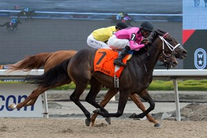 Miss Mo Mentum (outside) flies past Dixie Moon to a neck victory in the Selene Stakes at Woodbine