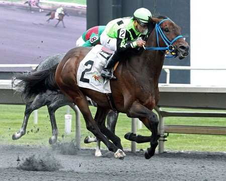 Matrooh wins the 2018 Hanshin Cup