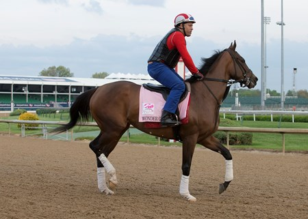 Kentucky Oaks contender Wonder Gadot working in the morning of May 2, 2018.