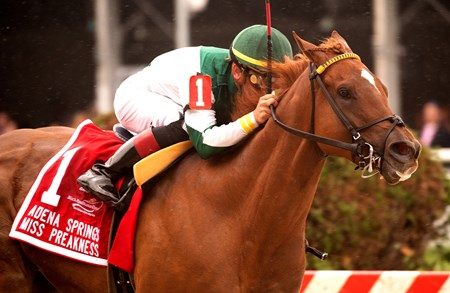 Happy Like a Fool with Tyler Gaffalione wins the Adena Springs Miss Preakness (G3)
