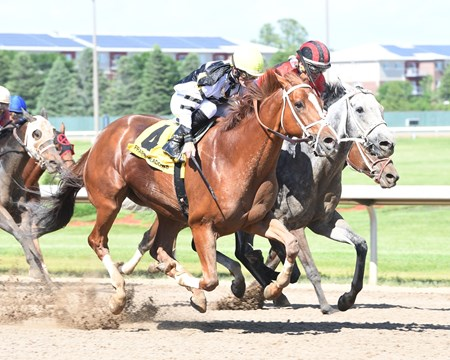 Apprehender wins the 2018 Ed Skinner Stakes at Prairie Meadows.