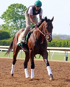 Bolt d'Oro gallops at Keeneland, where he has been training since finishing 12th in the Kentucky Derby