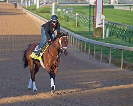Audible Could Make Noise On Bc Saturday Undercard Bloodhorse