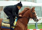 Justify with exercise rider Humberto Gomez at Pimlico Race Course
