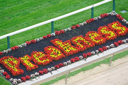 Image result for pimlico race course